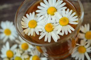 Himalayan chamomile flowers are a key ingredient in Krya face wash classic