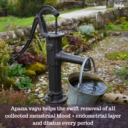 Apana vayu helps the removal of menstral waste efficiently and quickly