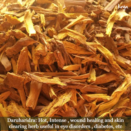 Daruharidra is used in several skin diseases in its choornam form